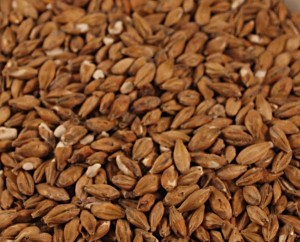 Acidulated Malt